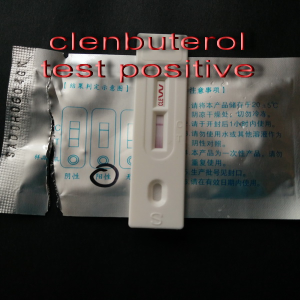Clenbuterol is not a Hormone